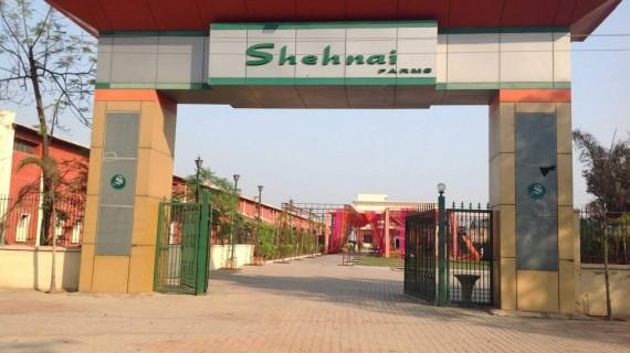 Shehnai Farms